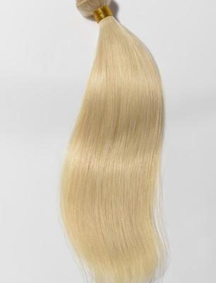 Russian Blonde Silky Straight Hair Extensions